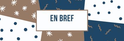 EN BREF BLOG